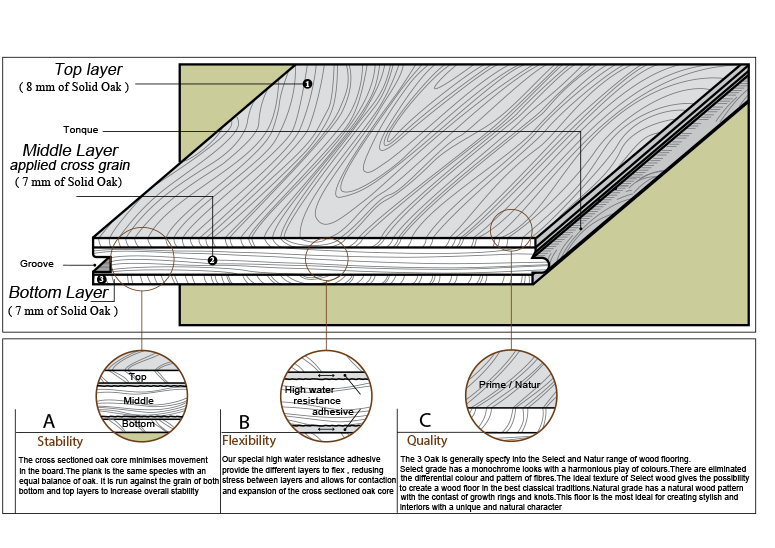3 Oak Structure_1