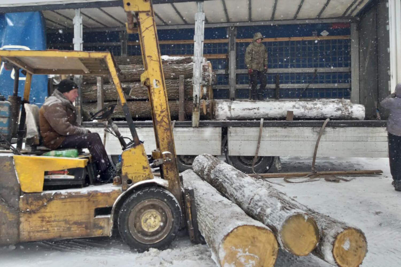 Oak Logs (1)